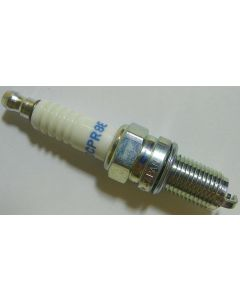 NGK Spark Plug (Removeable Tips)