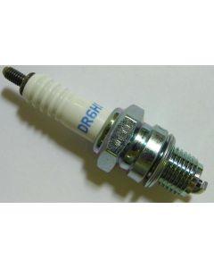 NGK Spark Plug (Marshall Special Order)
