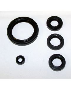 Honda 700 TRX-XX 2008-2009 Oil Seal Kit
