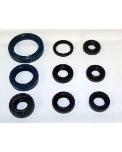 Kawasaki 450 Oil Seal Kit