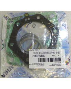 Polaris 300 Top End Gasket Kit